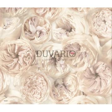 Facade FC2401 Çiçek Desenli country Duvar Kağıdı