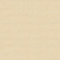 Casa Bene (3) 2121-4 Düz Renk Duvar Kağıdı