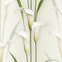 Casa Bene (3) 2572-1 3D Çiçek Desenli Duvar Kağıdı