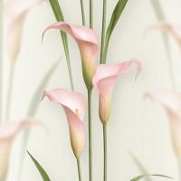 Casa Bene (3) 2572-2 3D Çiçek Desenli Duvar Kağıdı