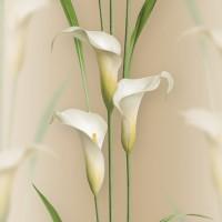 Casa Bene (3) 2572-4 3D Çiçek Desenli Duvar Kağıdı