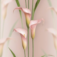 Casa Bene (3) 2572-6 3D Çiçek Desenli Duvar Kağıdı