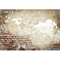 Taş & Tuğla Duvar Posteri A205-009