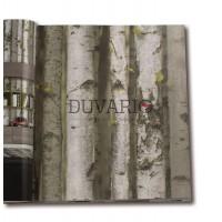 Exclusive 9270 Kavak Ağacı Desenli Duvar Kağıdı